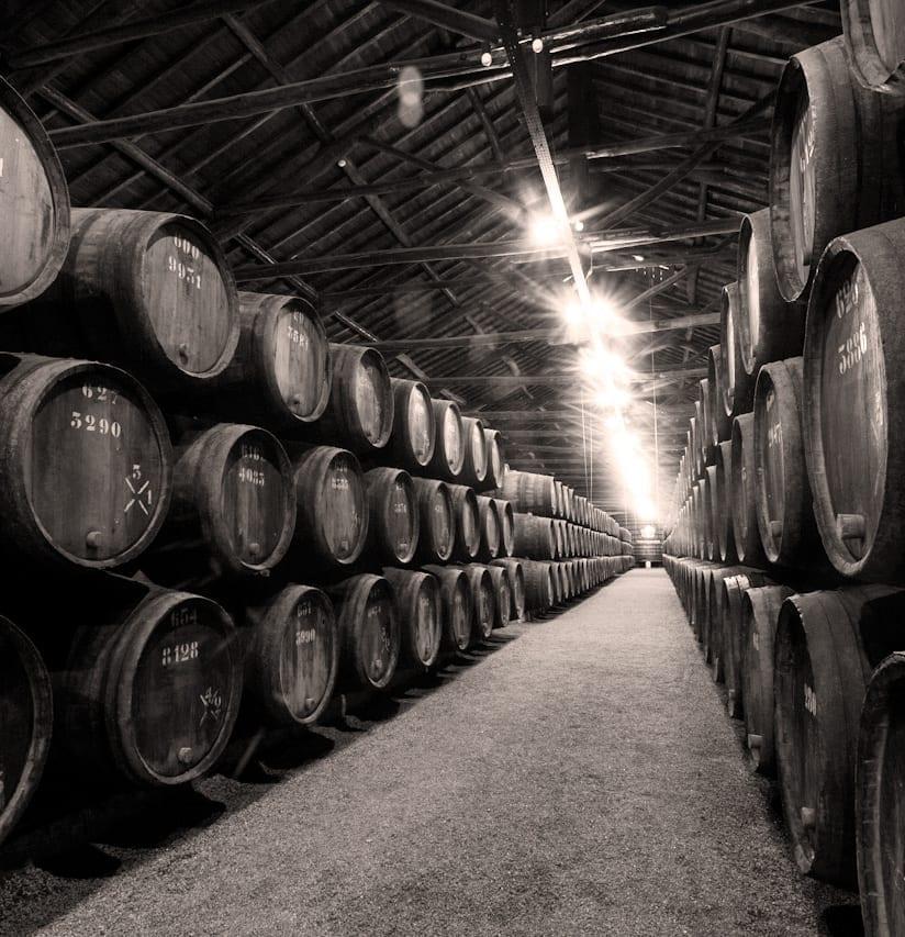 Port Wine Perfect Wine Choice