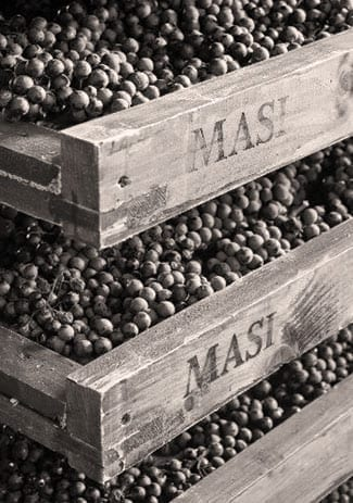Port Wine Types - Aging Process