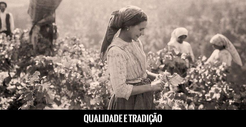 Qualidade e Tradição do Vinho do Porto