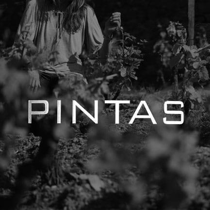 Vinho do Porto Pintas