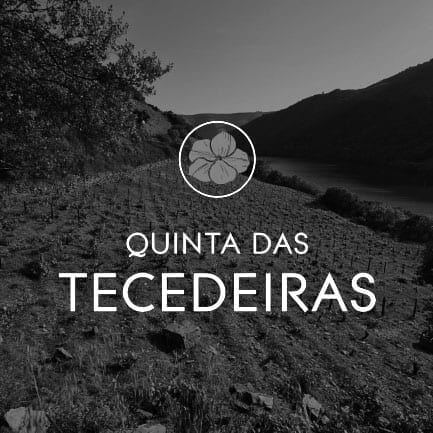 Vinho do Porto Quinta das Tecedeiras