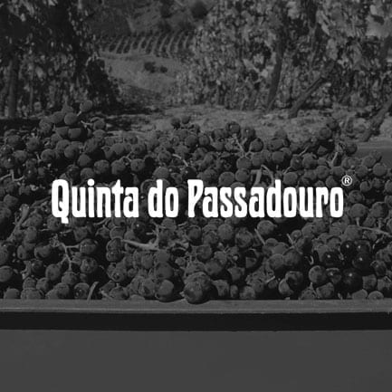 Quinta do Passadouro Port Wine